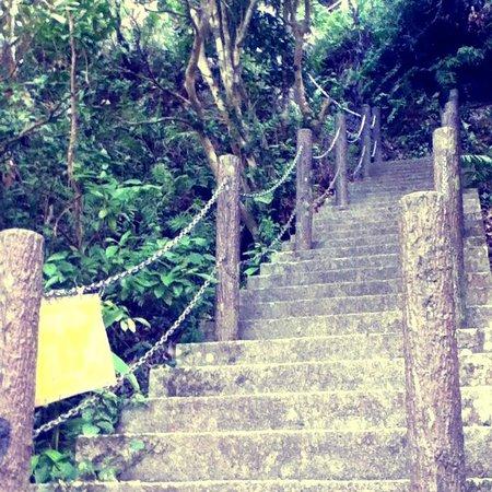Mt. Iegusuku : 頂上は遠い…