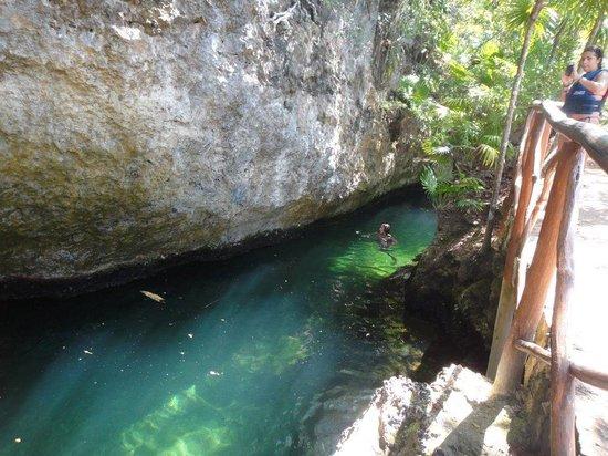 Parc Xel-Ha : cave jump