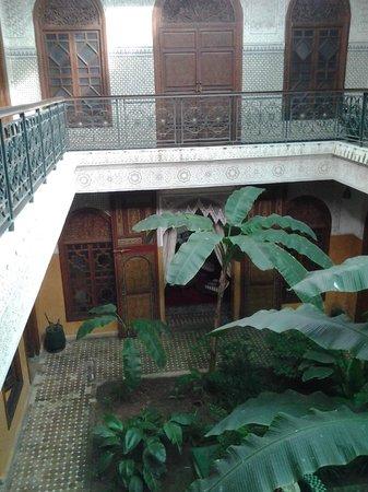 Riad Jardin Secret : Jardin vu des chambres