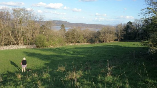 The Cumbria Grand: Nature Reserve just from the woodland walk