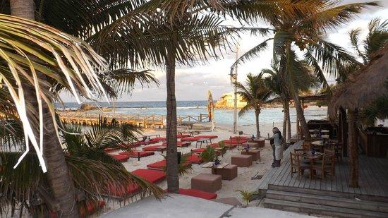 Na Balam Beach Hotel: Vue sur le Fénix