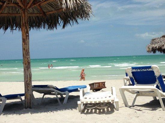Blau Marina Varadero Resort: Beach