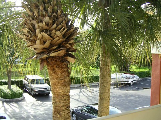 Extended Stay America - Fort Lauderdale - Tamarac: Tidy well landscaped parking area