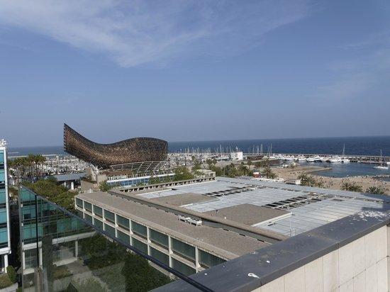 Pullman Barcelona Skipper: Вид с крыши отеля