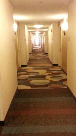 Hilton Garden Inn Fargo : Hallway....