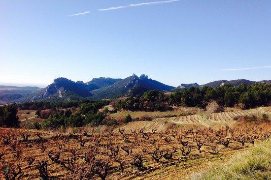 LE 17 Chambres et Tables d'Hotes: Provence