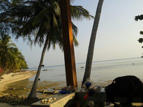 Blue Lotus Resort: Blick von unserem Bungalow (der erste) 500 THB