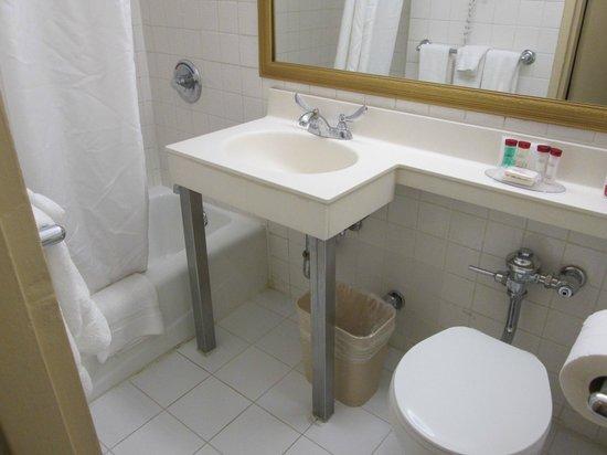 Ramada Jersey City : Badewanne und Waschbecken