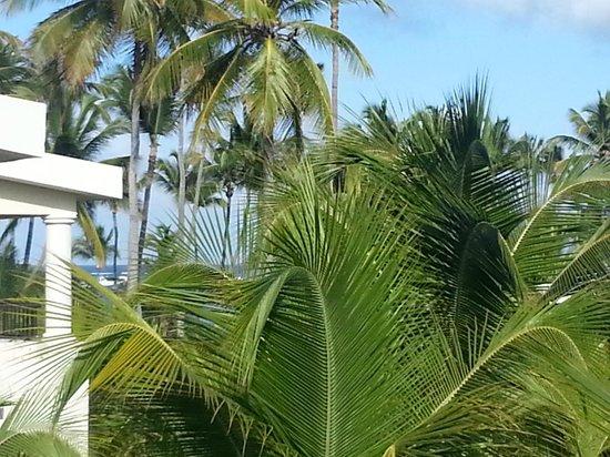 Paradisus Palma Real Golf & Spa Resort: Balcony view towards ocean