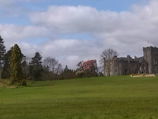 Kilronan Castle Estate & Spa: View from wooded drive way up to the hotel