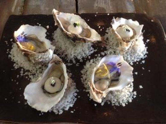 Le Petit Hotel Du Grand Large : Huîtres marinées,sorbet au huîtres