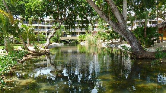 Maritim Resort & Spa Mauritius: Grounds
