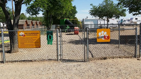 Kingman KOA: The k9 area