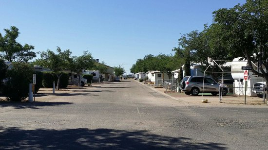 Kingman KOA: A view along one of the streets in the park.