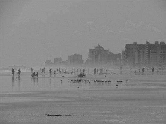 Beach at Daytona Beach : magnifique plage