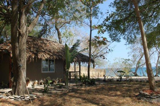 Jungle Beach Resort: Banana Air-con House
