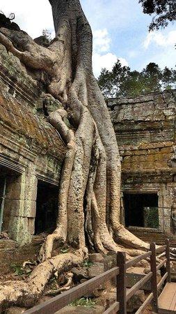 Sokha Angkor Resort: angkor wat