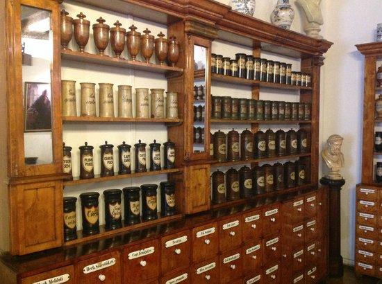 Pharmacy Museum : :)
