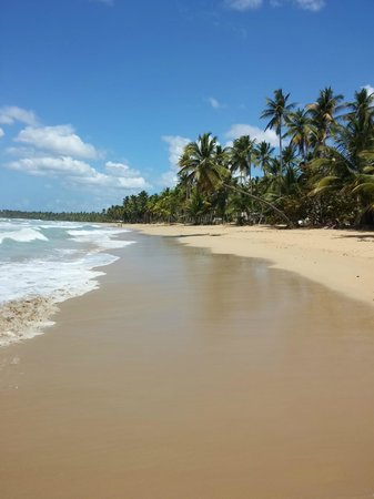 Casa Coson: Beach on a busy day!