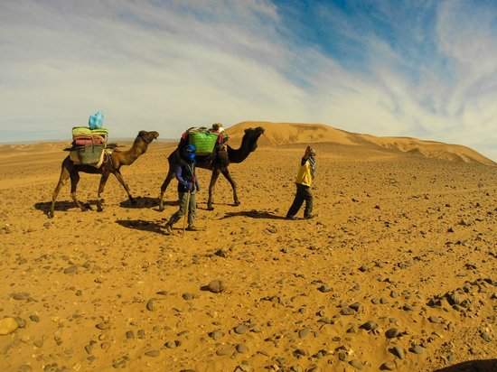Moroccan Adventure - Day Tours