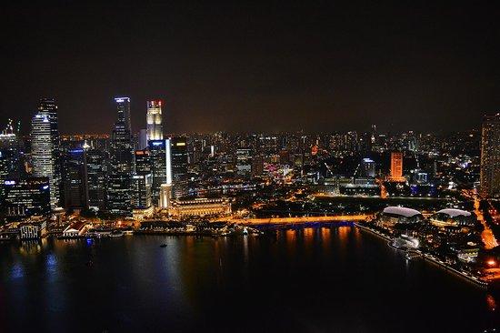 Marina Bay Sands Skypark: сингапур