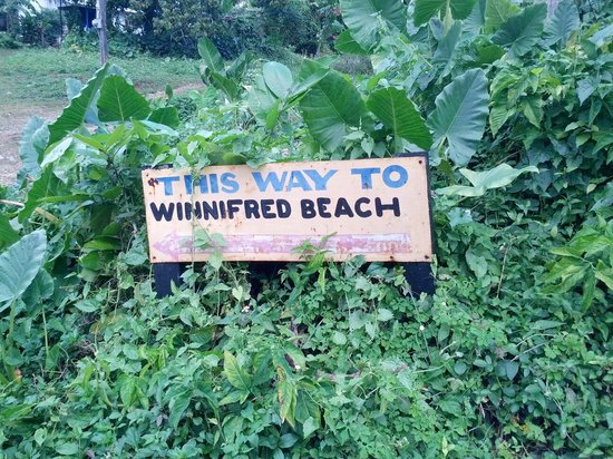 Winnifred Beach : Cartello che indica la spiaggia dalla main Road...