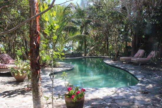 Kamalame Cay: Private Pool