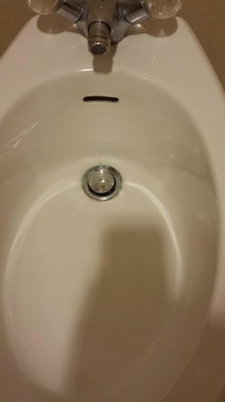 Santa Ynez Valley Marriott: Crusty bidet.