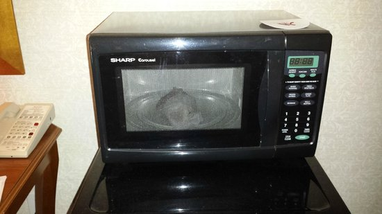 Santa Ynez Valley Marriott: Food in microwave.