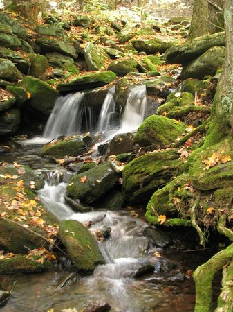 Kaatskill Mountain Club: Area Attractions