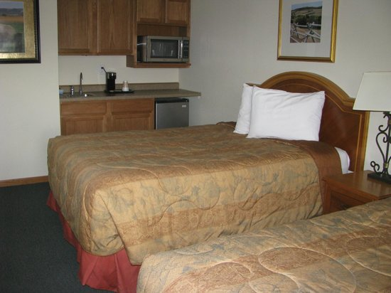 Mountain View Hotel : Double kitchenette room