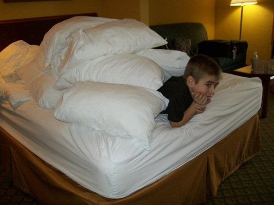 Quality Inn Orlando Airport: PLENTY of pillows in the room