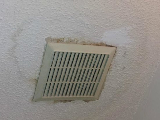 ‪شابيل هيل إنتاون: Water stained ceiling in bathroom‬