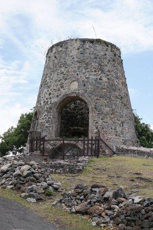 Tropic Tours: Sugar Mill