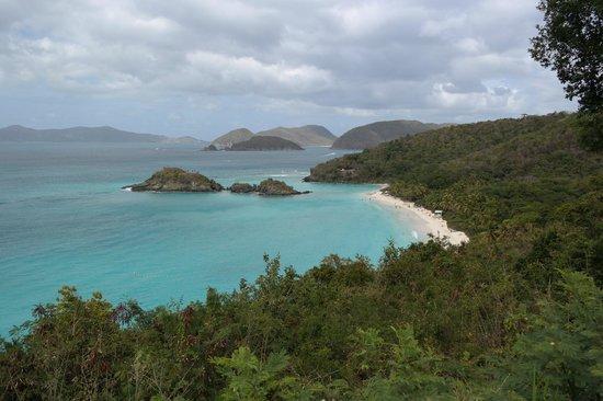 Tropic Tours: Trunk Bay