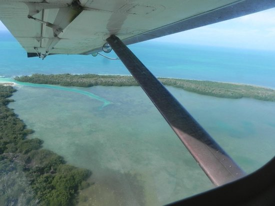 Key West Seaplane Adventures: out my window