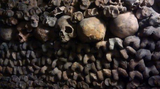 Les Catacombes : Imagem perturbadora!