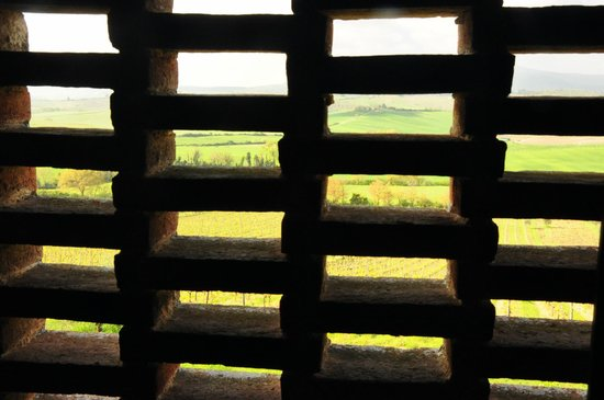 Az. Agricola Casina di Cornia: Vue de la chambre