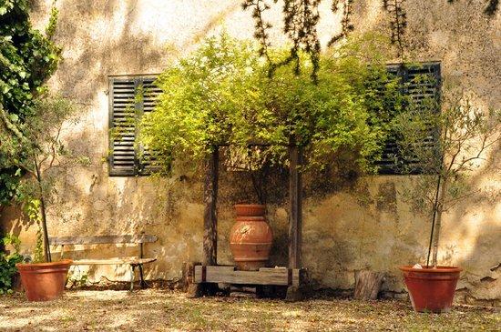Az. Agricola Casina di Cornia: A Castellina in Chianti