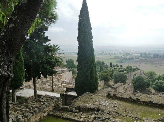 Conjunto Arqueológico Madinat Al-Zahra: Site archéologique 1