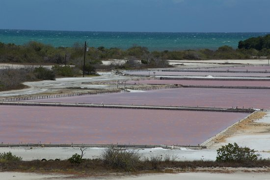 Playa Sucia: Salt harvesting
