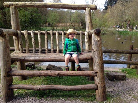 Dean Heritage Centre: A mini boy.....or a huge chair??