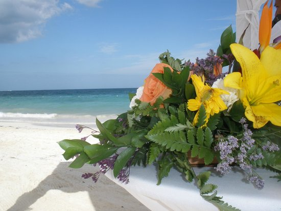 Ocean Coral & Turquesa : Wedding on the beach