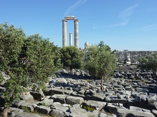 Temple of Apollo: dont miss it!