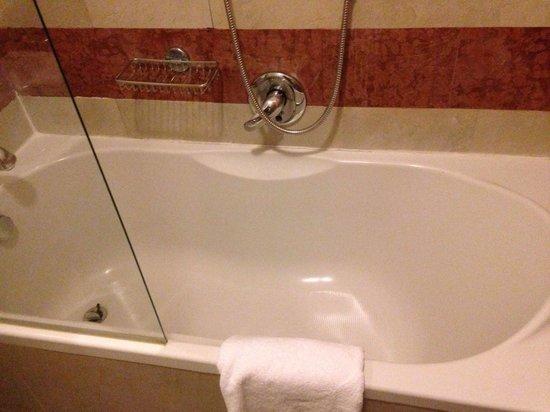 BEST WESTERN PLUS Hotel Milton Roma: Vasca
