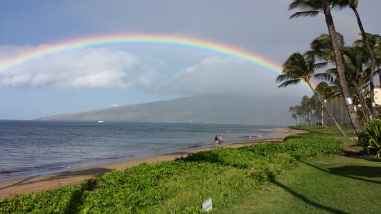 Kihei Kai Oceanfront Condos: Rainbow welcomes our guests at Kihei Kai early in the morning