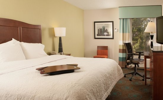 Hampton Inn Atlanta - North Druid Hills: Great views and great amenities. Hampton Inn Druid Hills is the ideal place for you while in ATL