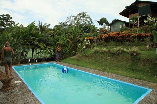 Mirador Osa: Pool Area