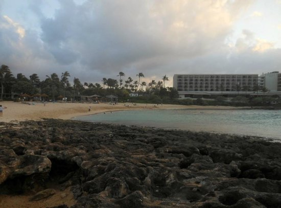 Queen Kapiolani Hotel: Turtle Bay