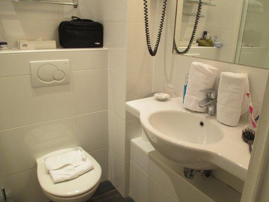 Hôtel Virgina : badkamer